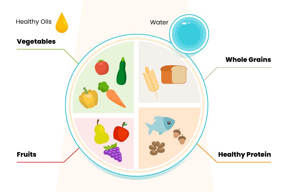 healthy balanced meal diagram
